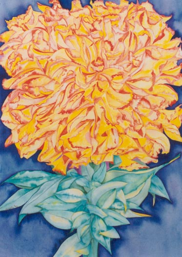 Aster - painting by Giselle