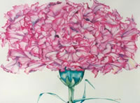 Carnation - Flower Power - watercolour by Giselle