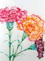 Ikebana - Carnations - picture by Giselle
